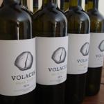 Oi-ampelones-tis-Volacus-Wine-stin-Tino-1